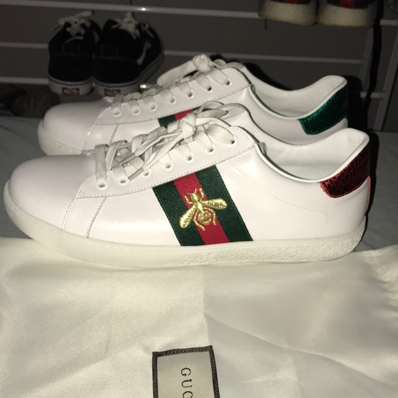 gucci shoes price in dollars